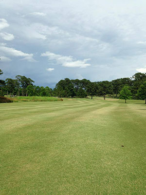 Monthly Golf Tournaments